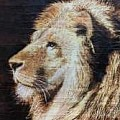 Pyrography - Art Group